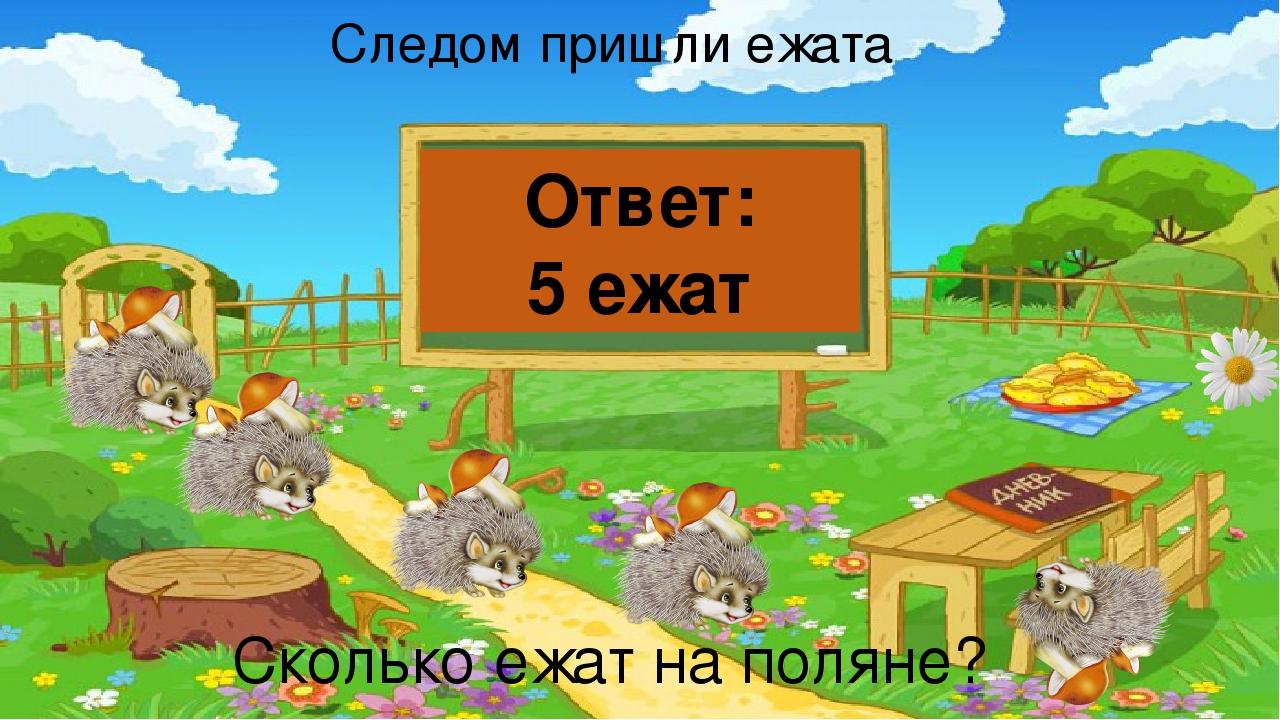 Следом пришли ежата Сколько ежат на поляне? Ответ: 5 ежат
