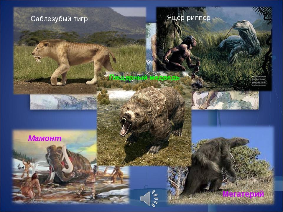 Саблезубый тигр Ящер риппер Мегатерий Мамонт Пещерный медведь