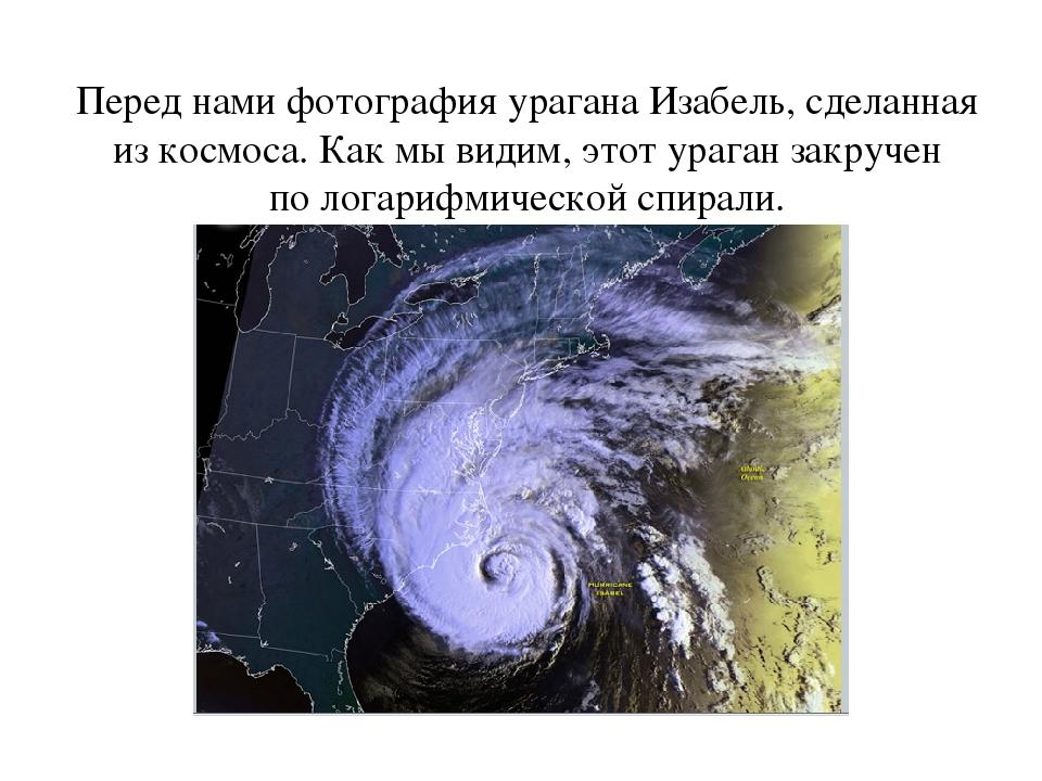 Перед нами фотография урагана Изабель, сделанная изкосмоса. Как мывидим, эт...