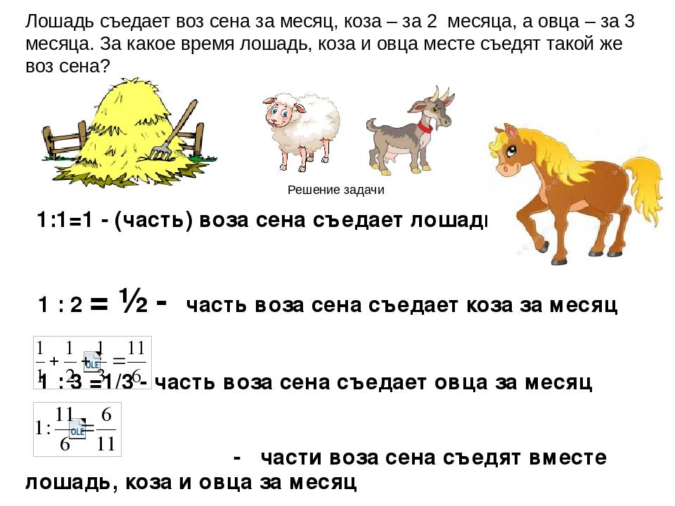 1:1=1 - (часть) воза сена съедает лошадь за месяц 1 : 2 = ½ - часть воза сена...